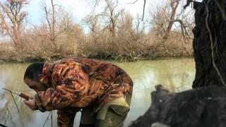 Голубицкая рыбалка казачий ерик