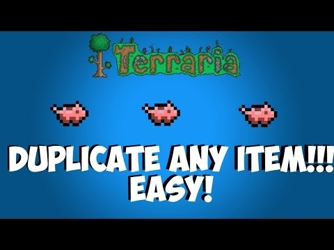 Terraria duplication glitch solo! All consoles,1%real