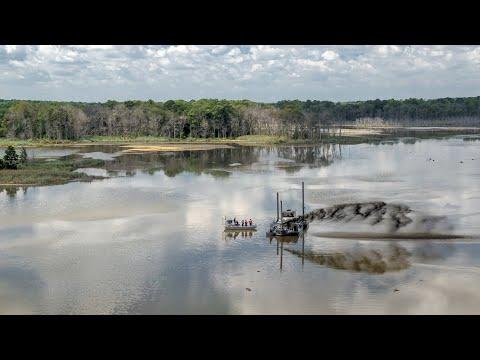 A marsh reality