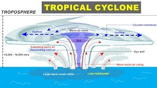 Tropical Cyclone, Hurricane, Storm Formation - Geography of UPSC, IAS, CDS, NDA