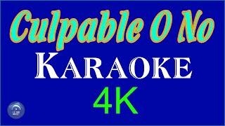 CULPABLE O NO   KARAOKE   4k