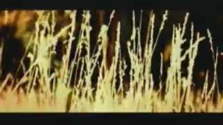 Mercury Rev - Nite And Fog video
