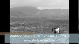 Amharic Basic Course - Volume 1 - Unit 11