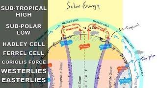 Subtropical high, Subpolar low, Easterlies, Westerlies | Atmospheric circulation | Pressure belts