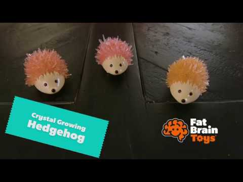 Youtube Video for Crystal Hedgehog - Grow Your Own!
