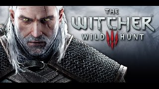 VideoImage1 The Witcher 3: Wild Hunt