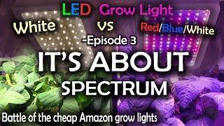 Czy oświetlenie plant jest lepsze od 6500k? Finał