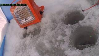 Рыбалка на р. тура свердловская область