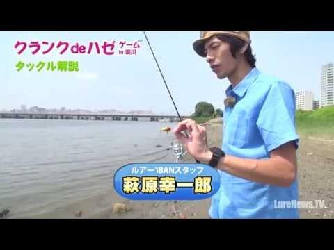 Vobler DUO Kurakura 3cm 2.5g AHA0149 Baby Aji F