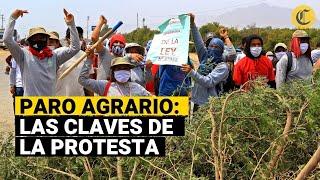LEY AGRARIA ES PARTE DE LA POLÍTICA DE EXPLOTACIÓN NEOLIBERAL CONTRA LA CLASE OBRERA
