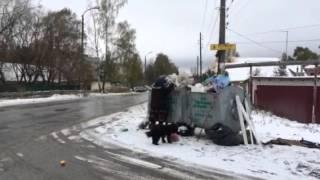 Приговор- виновнику смертельной аварии в Городце