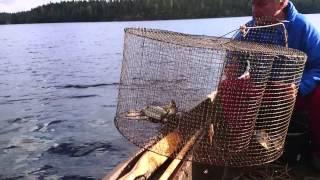 рыбалка корчагами