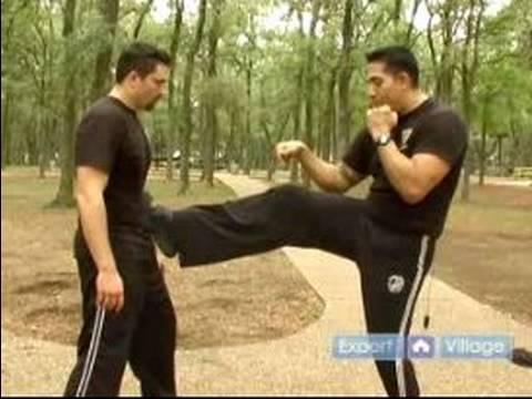 Krav Maga Self Defense Techniques : Vertical Front Kicks in Krav Maga