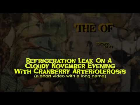 The OF - Refrigeration Leak (Official Video)...