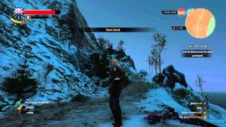 The Witcher 3: Wild Hunt_20150625150748