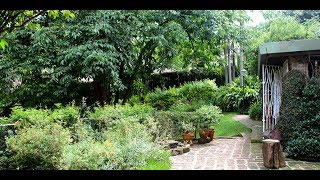 Gardener turns home into haven of tranquillity - VIDEO