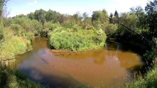 Рыбалка на реке веля в дмитровском районе