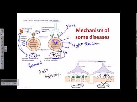 Video Autoimmunity (self immunity)