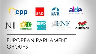 The Political Groups in the European Parliament - ...