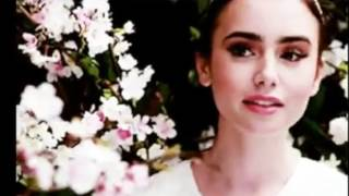 Red Stained Rose (wattpad book trailer)