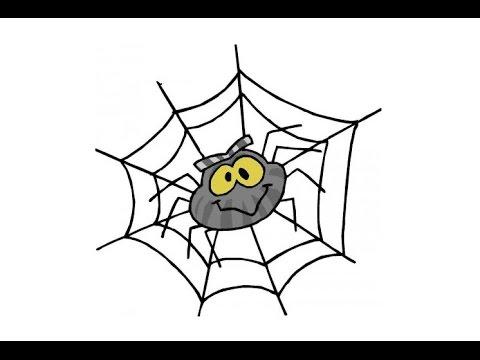 Народные приметы про пауков