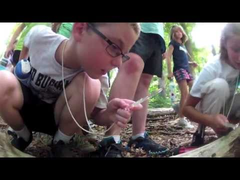 Junior Naturalist Camp
