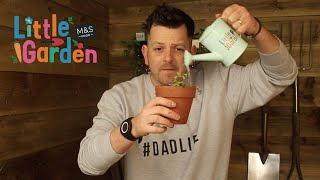 M&S | The Skinny Jean Gardeners Review Of Little Garden Ep2