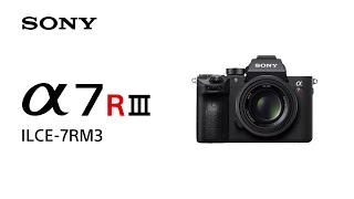 Sony A7R III Body GARANSI RESMI