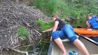 Don't put a paddle into a Beaver Lodge