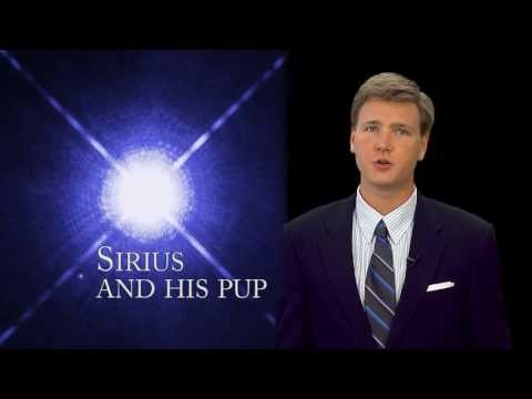Sirius: The Dog Days of Summer