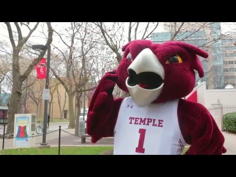 Ask an Owl: Who founded Temple University?