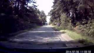 preview picture of video 'Sarna Rudka - Ciechanowiec, Polska, 2014-07-06'