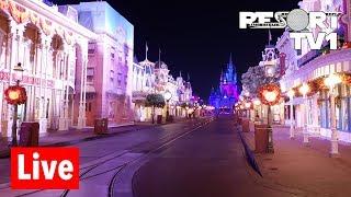 🔴Live: Magic Kingdom Live Stream - Happily Ever After, Haunted Mansion & More - Walt Disney World