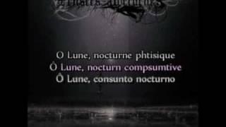 Pensées Nocturnes - Lune Malade (Translated to english and spanish, lyrics)