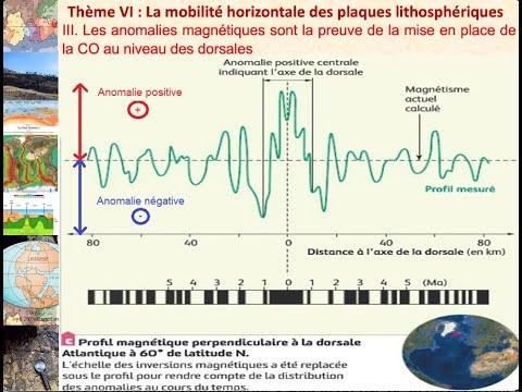 III  Les anomalies magnétiques sont la preuve de la mise en place de la croûte océanique au nivea