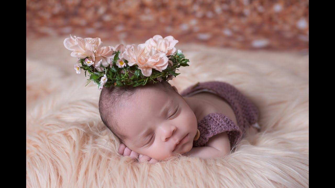 Home - Little Life Studio - Premium Newborn Photography Shoreline Connecticut