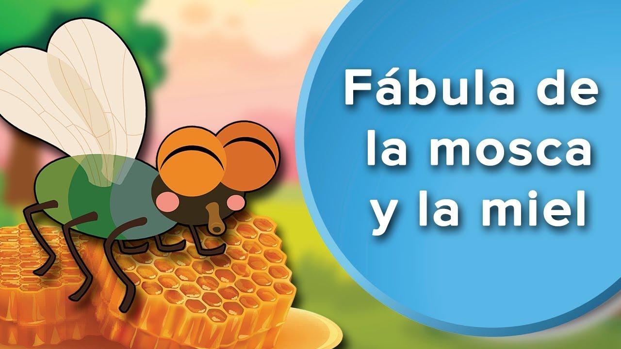 Fábula de la mosca y la miel | Cuentos con moraleja para niños