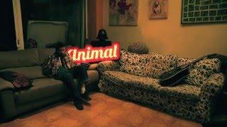 Animal - No Hi Ha Ningú