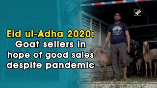 Eid ul-Adha 2020: Goat sellers in hope of good sales despite pandemic