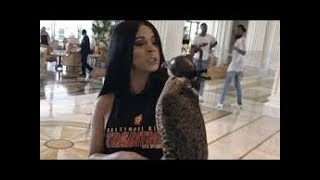 Cardi B  Almost Loses Her Hand After Playing With A Falcon In Dubai