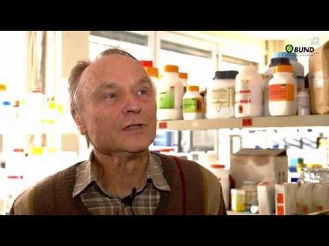 Bienenforscher: Pestizide wirken verheerend auf Bienen
