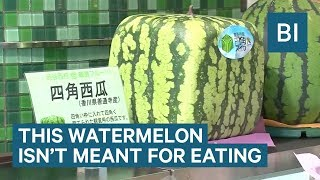 People In Japan Pay $150 For This Square Watermelon