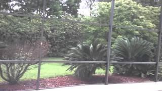 8521 Wythmere Ln Orlando FL 32835