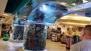 S C H E E L S SPORTING GOODS STORE - DANG, THAT'S A BIG STORE! Hunting Fishing Sports they have it!