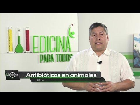 Pomada antifúngica para la diabetes