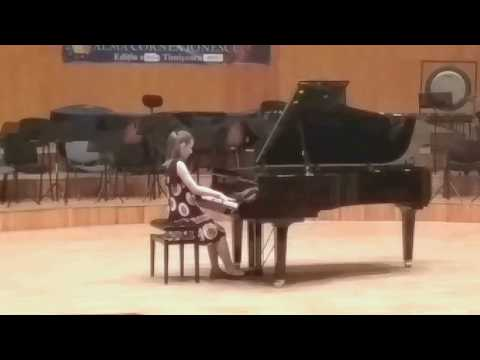 Maria Alice Poenariu - Euroregional