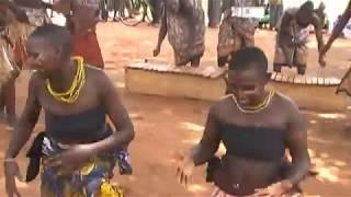 'Mkwajungoma'  Nyati group
