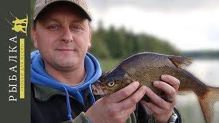 Рыбалка в финляндии на озере инари