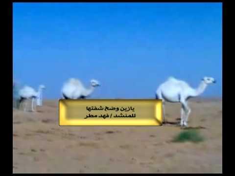 يازين وضحن شفتها بصوت فهد مطر