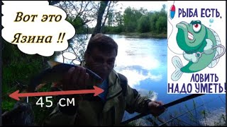 Рыбалка в талицком районе свердловской области